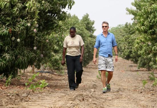 A walk round a farm